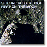 Silicone on the Moon !